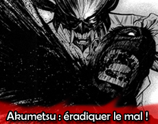 Bilan 2012 pour le march du manga japonais