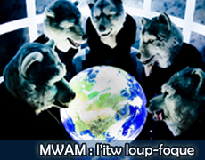Interview MWAM