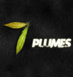 7plumes